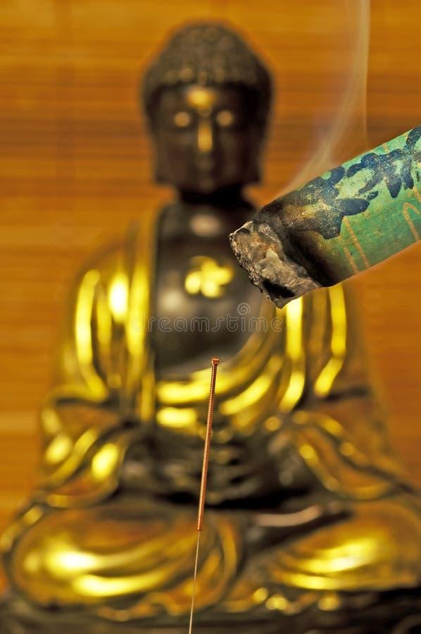 akupunktury moxibustion igła zdjęcie stock