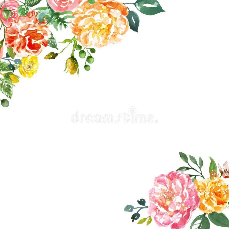 Akvarellhanden målade blommaramen på vit bakgrund Rosa pioner för gul anfd med knoppar och grön lövverk f?r kort, stock illustrationer