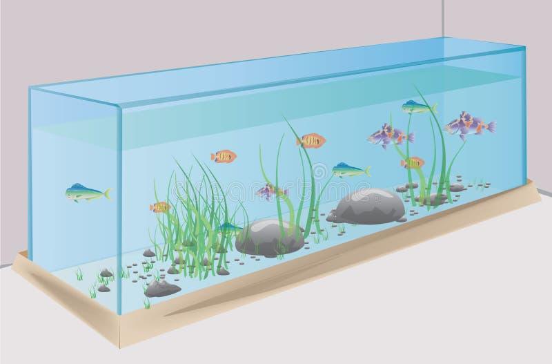 Akvarium med fiskstenar och gräs arkivbild