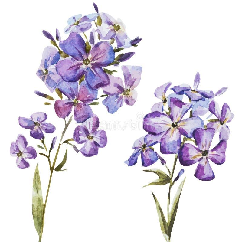 Akwarela ładni kwiaty ilustracji