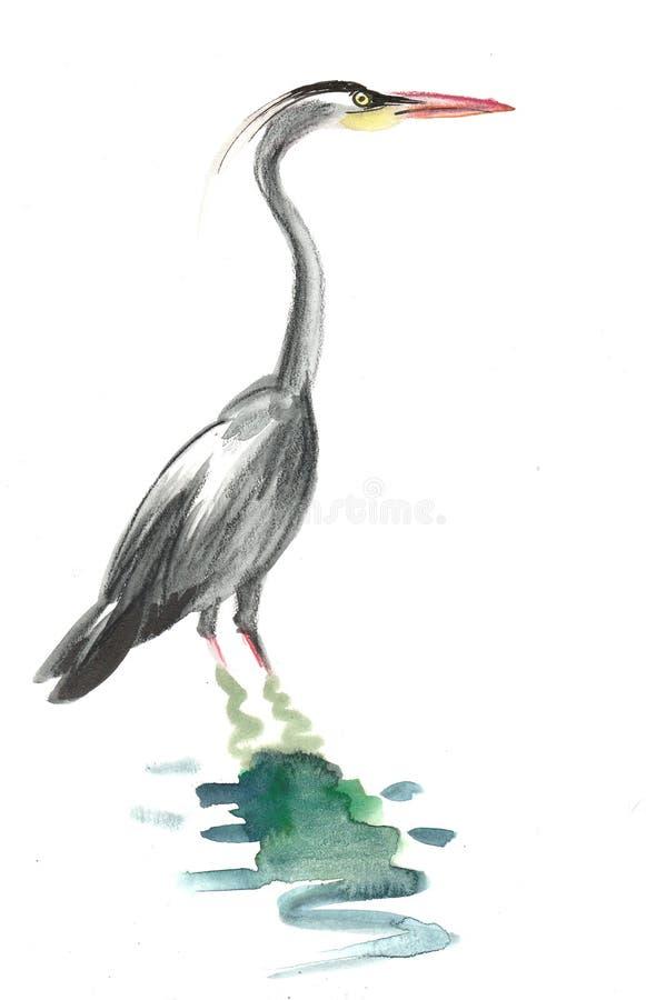 Akwarela żuraw royalty ilustracja