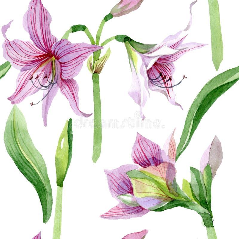 Akwarela amarylka różowy kwiat Kwiecisty botaniczny kwiat Bezszwowy tło wzór royalty ilustracja
