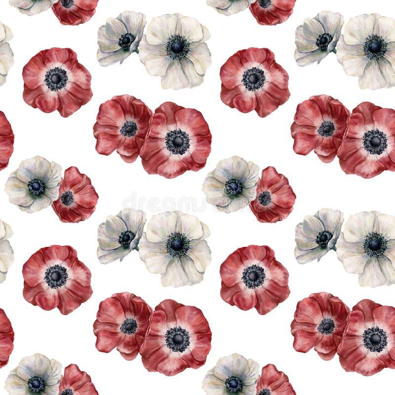 Akwarela anemonowy bezszwowy wzór Ręka malował biel i czerwień kwitnie odosobnionego na białym tle Ilustracja dla obraz stock