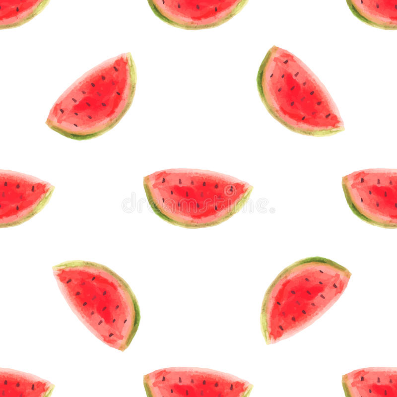 Akwarela arbuza plasterka wektoru illustrartion Surowy owocowy jedzenie royalty ilustracja