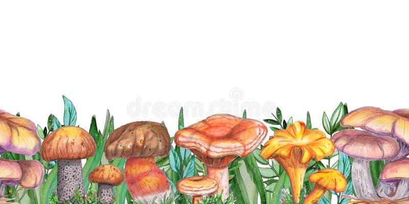 Akwarela bezszwowy sztandar z pieczarkami na białym tle ilustracji