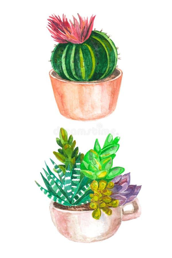 akwarela bezszwowy wzór kaktusy i sukulenty starożytny ciemności tła papieru akwareli żółty zdjęcie royalty free