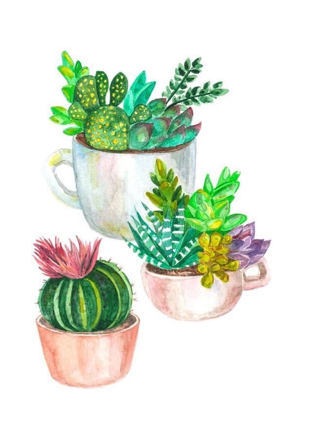 akwarela bezszwowy wzór kaktusy i sukulenty starożytny ciemności tła papieru akwareli żółty zdjęcie stock