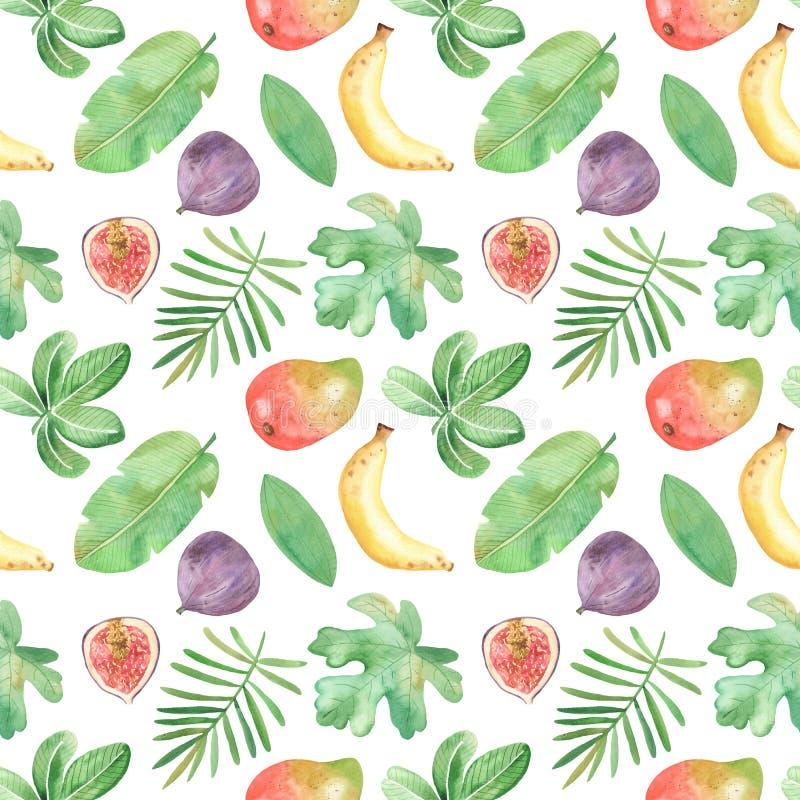 Akwarela bezszwowy wzór z owoc, rośliny, liście, kwiaty Afryka ilustracja wektor
