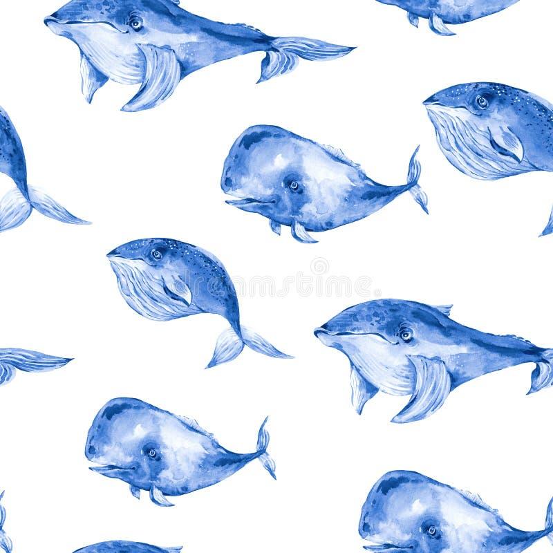 Akwarela bezszwowy wzór błękitny wieloryb, nautyczny cyfrowy papier, dennego zwierzęcia niekończący się tekstura royalty ilustracja