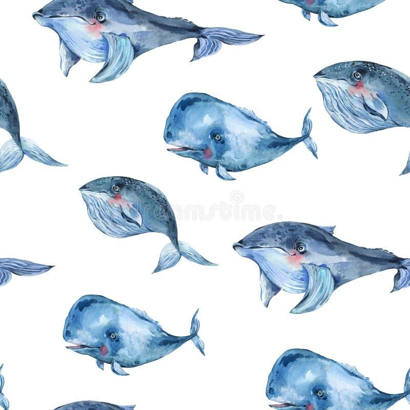 Akwarela bezszwowy wzór błękitny wieloryb, nautyczny cyfrowy papier, dennego zwierzęcia niekończący się tekstura ilustracji