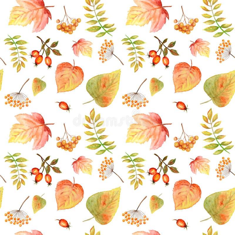Akwarela Bezszwowy wzór z jaskrawym koloru lasem opuszcza i rozgałęzia się Piękny jesieni tło w pomarańcze, zieleń obrazy stock
