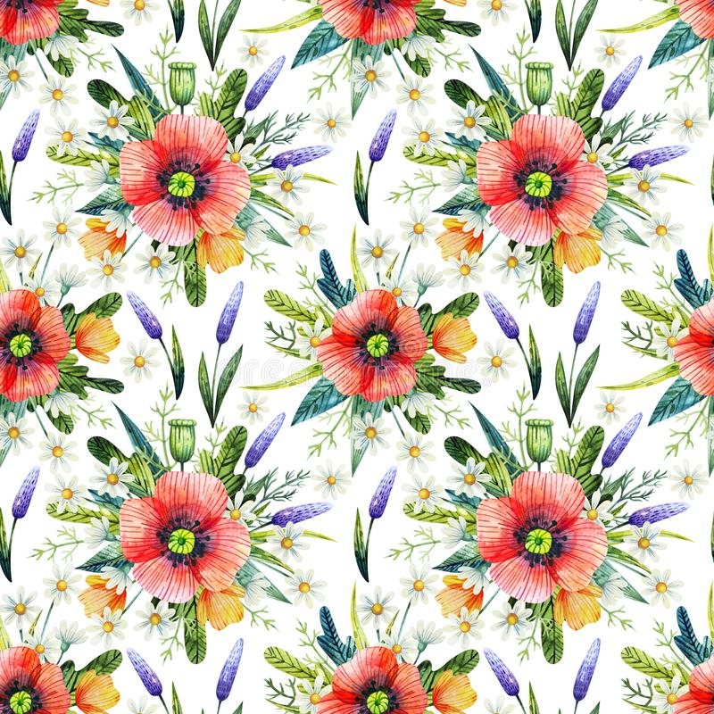 Akwarela bezszwowy wzór z maczkami szczegółowy rysunek kwiecisty pochodzenie wektora Ręka rysujący lato kwiaty fotografia royalty free