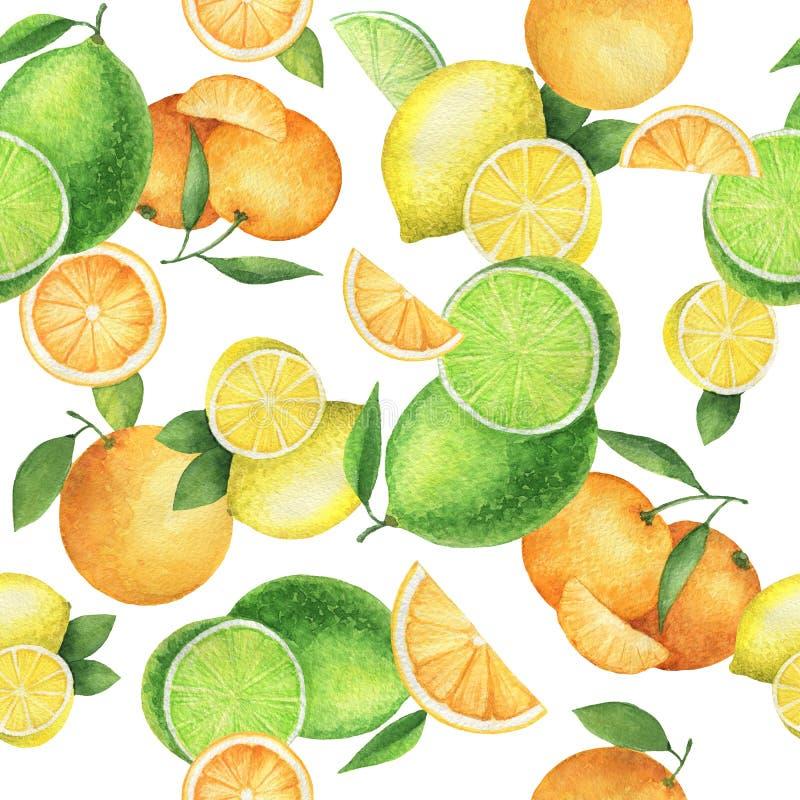 Akwarela bezszwowy wzór z soczystymi pomarańczami, mandarynkami, cytrynami i wapnem, ilustracji