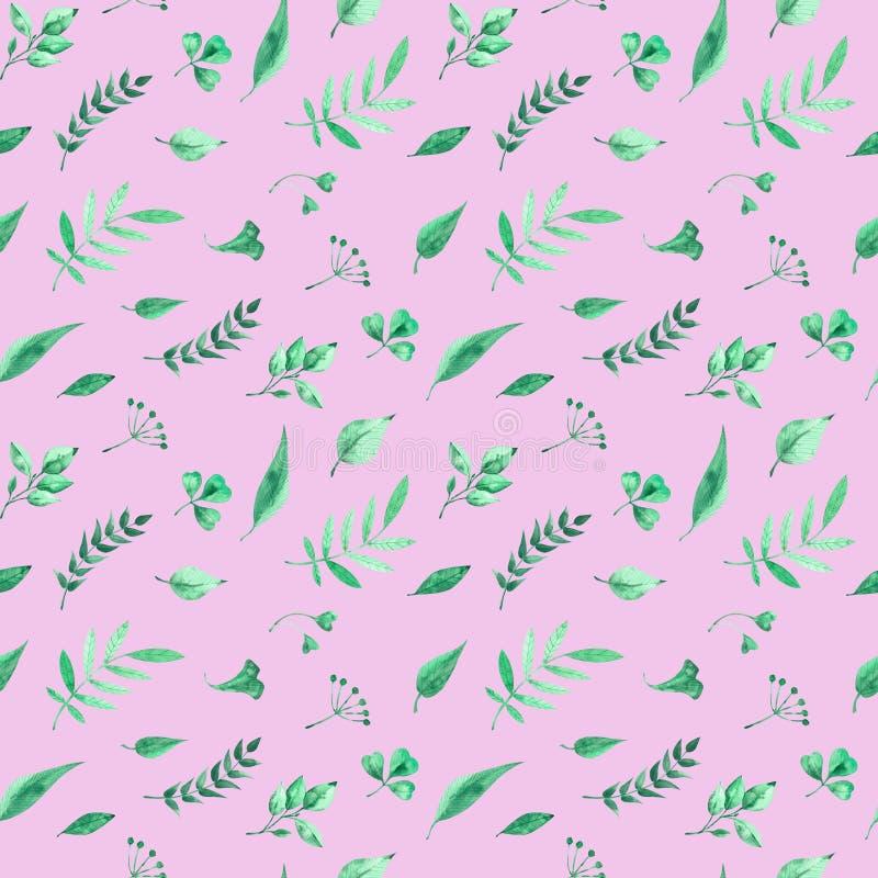 Akwarela bezszwowy wzór z zielonymi ziele i liśćmi na różanym tle ilustracji