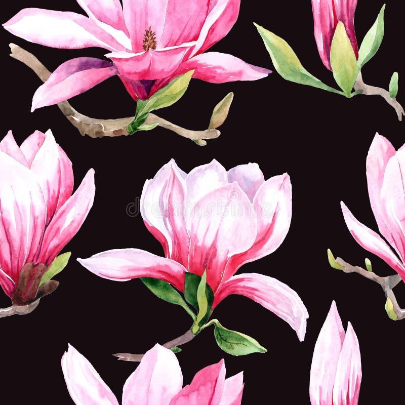 akwarela bezszwowy wz?r magnoliowi kwiaty Magnoliowy wiosna kwiat ilustracja wektor