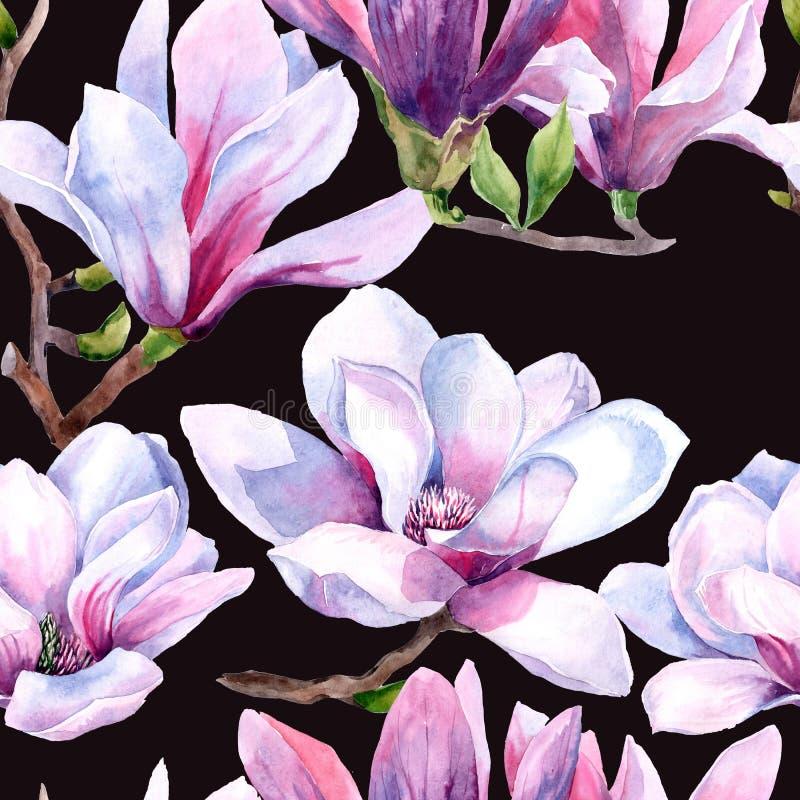 akwarela bezszwowy wz?r magnoliowi kwiaty Magnoliowy wiosna kwiat royalty ilustracja