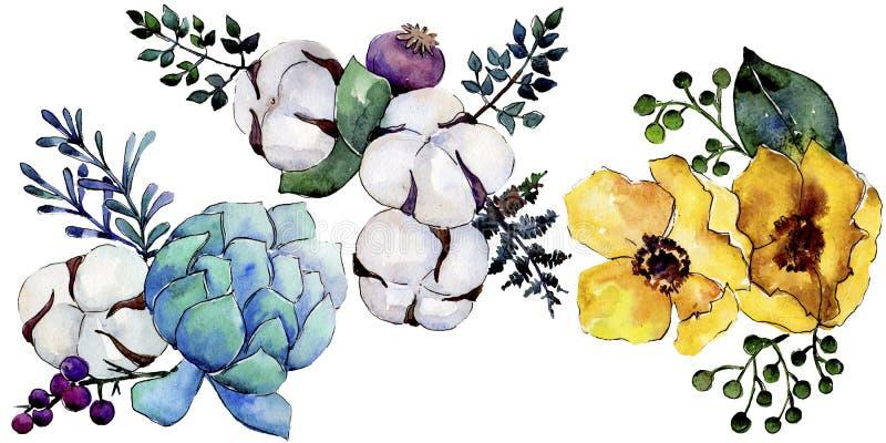 Akwarela bukieta kolorowy kwiat Kwiecisty botaniczny kwiat Odosobniony ilustracyjny element royalty ilustracja