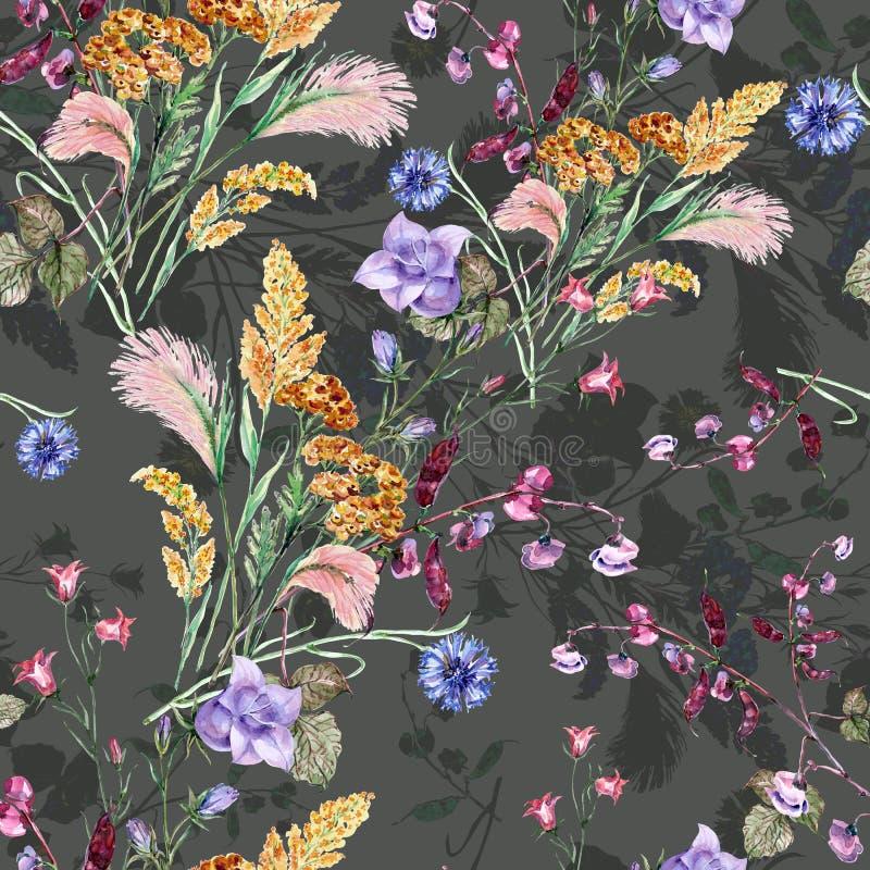 Akwarela bukieta pola kwiaty Bezszwowy wzór na zmroku - szary tło royalty ilustracja
