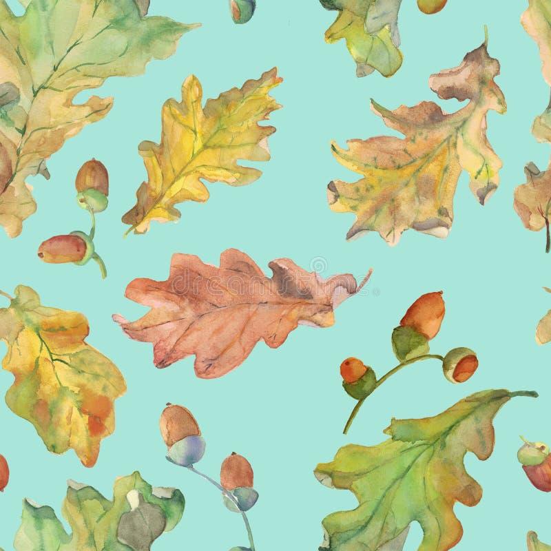 Akwarela dąb i acorns bezszwowy wzór na błękicie ilustracji