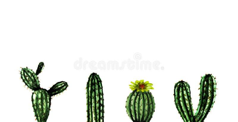 Akwarela egzota zieleni kaktusa ręka malująca kolekcja Set zwrotnik rośliny Meksykanina tła stylowy szablon royalty ilustracja