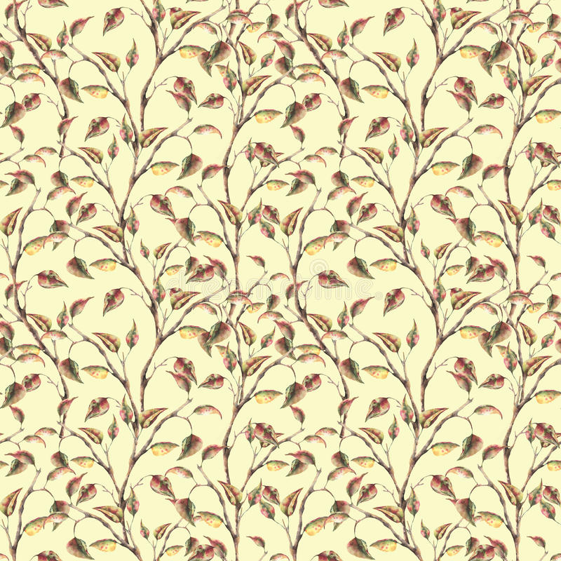 Akwarela elegancki wzór z gałąź z liśćmi Wręcza malującego jesień ornament na pastelowym tle dla ilustracji