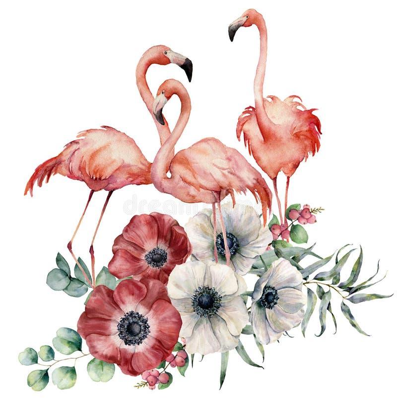 Akwarela flaming z anemonowym bukietem Wręcza malujących egzotycznych ptaki z kwiatami, eukaliptusów liśćmi i gałąź odizolowywają ilustracji