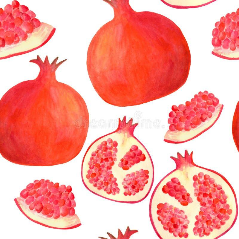 Akwarela granatowa bezszwowy wz?r Wręcza patroszonego czerwonego owocowego ilustracyjnego tło odizolowywającego na bielu dla karm ilustracja wektor