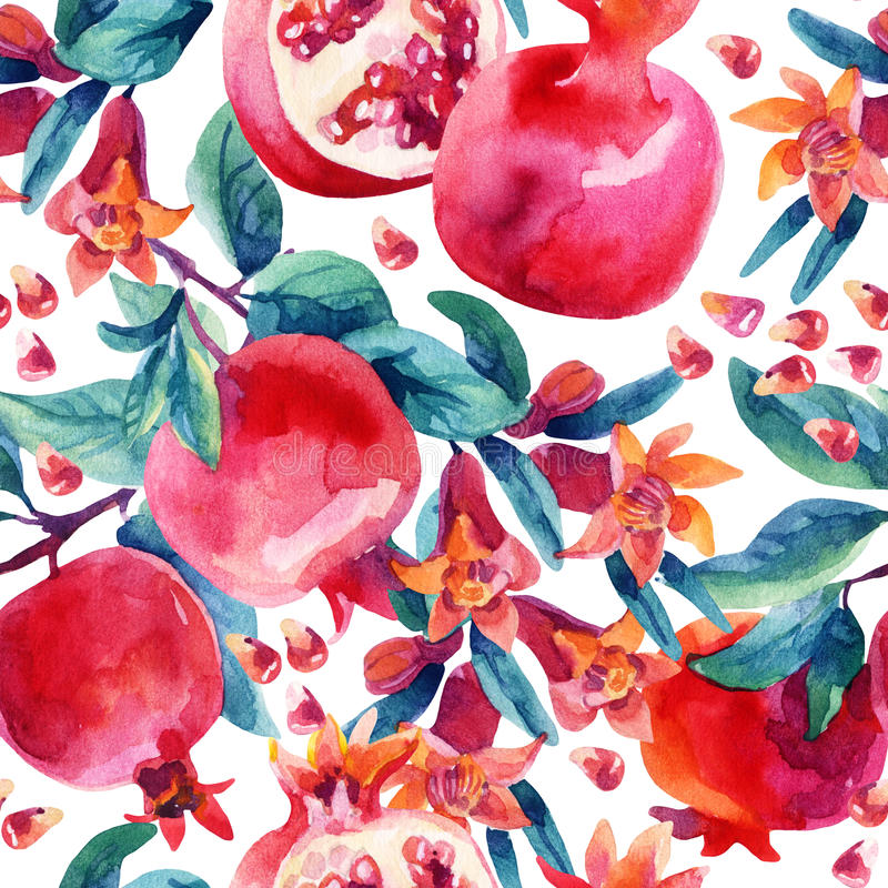 Akwarela granatowa kwiat rozgałęzia się i owocowy bezszwowy wzór royalty ilustracja