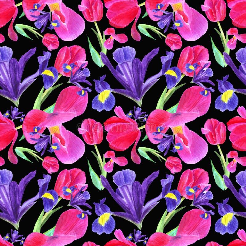 akwarela irys, tulipan i liścia bezszwowy wzór na czarnym tle, ilustracja wektor