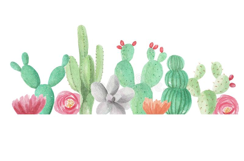Akwarela kaktusów sukulentów zieleni Rabatowej Kaktusowej ramy wiosny Ślubny lato ilustracja wektor