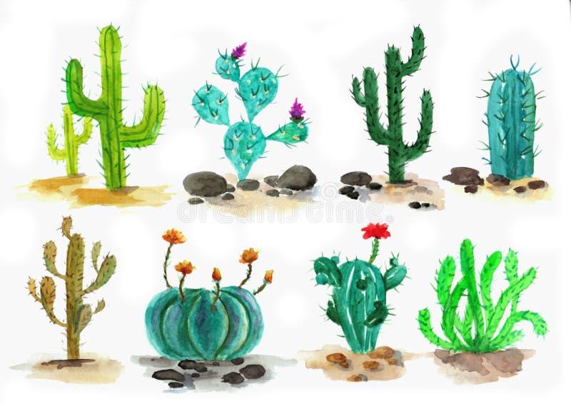 Akwarela kaktusa set ilustracja wektor