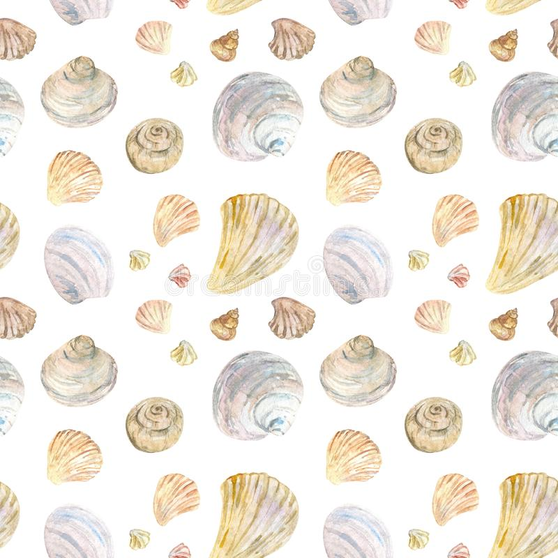 Akwarela koloru seashell naturalny wzór ilustracja wektor