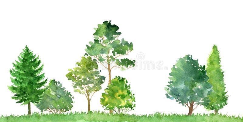 Akwarela krajobraz z drzewami ilustracji