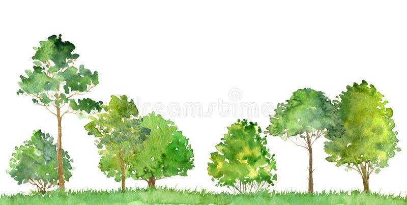 Akwarela krajobraz z drzewami ilustracja wektor
