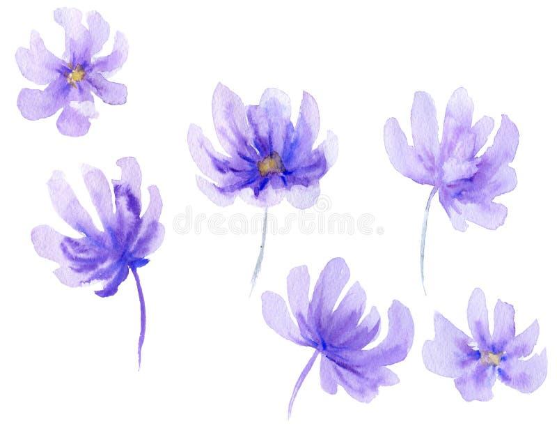 Akwarela kwiatu kształty ilustracji