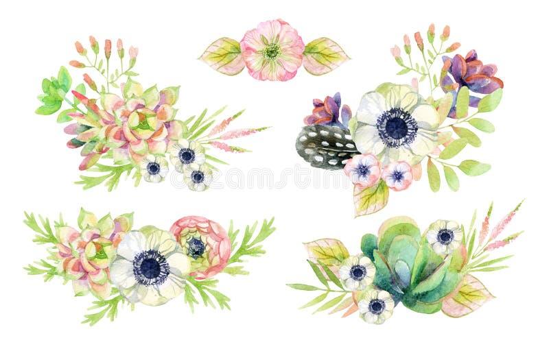 Akwarela kwiatu przygotowania w rocznika stylu z piórkami royalty ilustracja