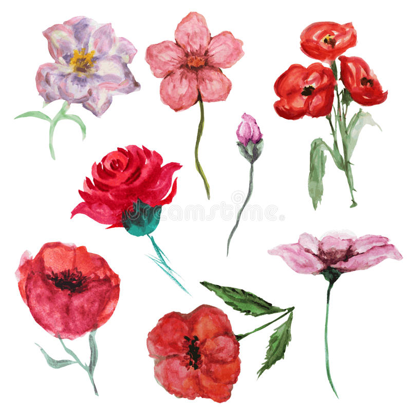 Akwarela kwiaty ustawiający ilustracja wektor