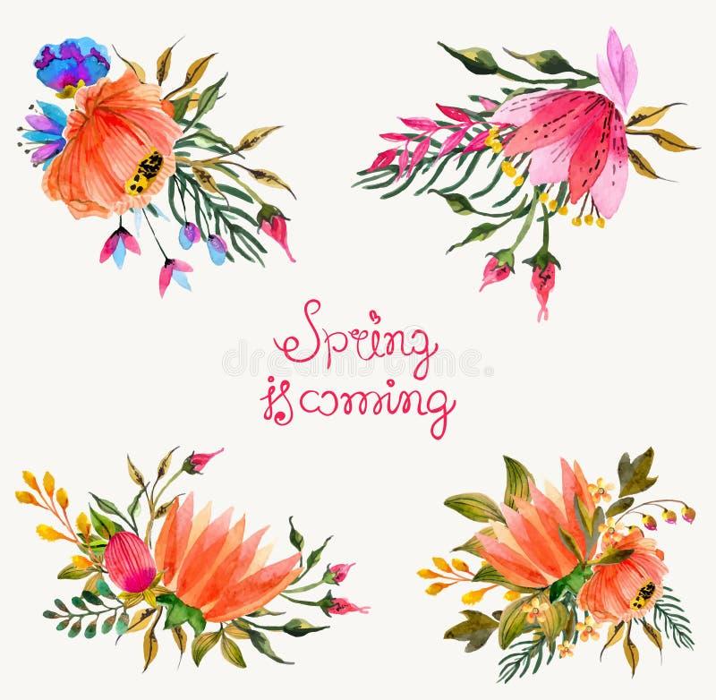 Akwarela kwiaty ustawiający Kolorowa kwiecista kolekcja z liśćmi a ilustracja wektor