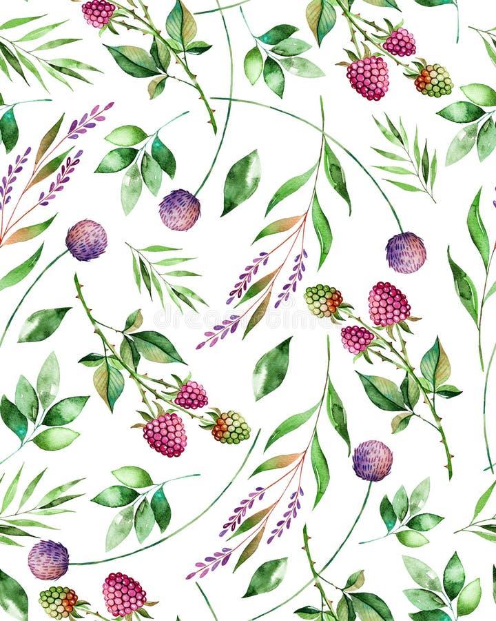 Akwarela kwiecisty bezszwowy wzór z kwiatami, malinką, gałąź i ulistnieniem, ilustracji