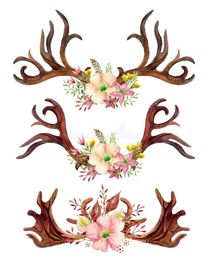 Akwarela kwiecisty poroże royalty ilustracja