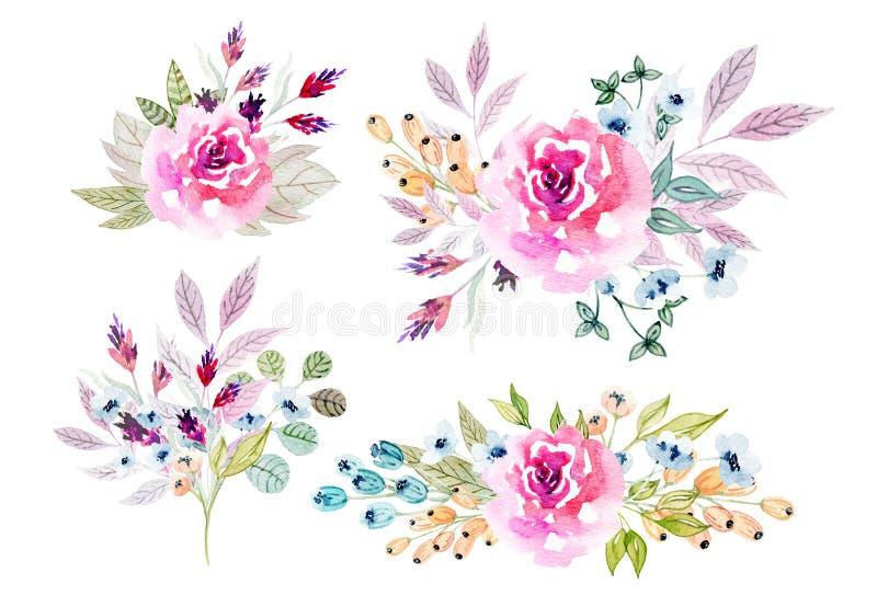 Akwarela kwitnie ilustrację skład royalty ilustracja