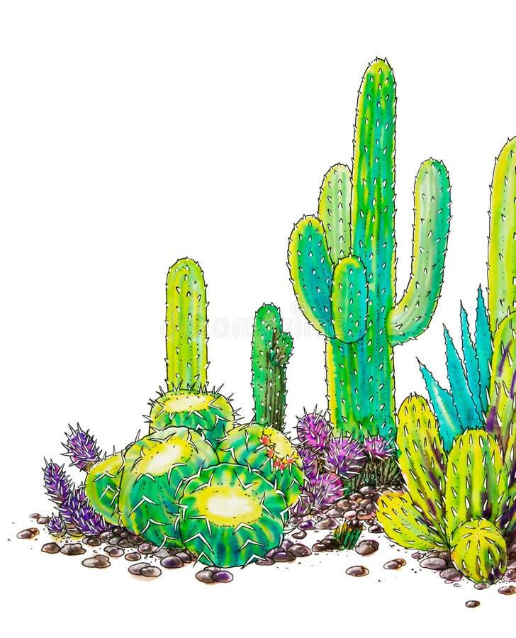 Akwarela malujący kaktusa krajobraz Meksyk ilustracja wektor