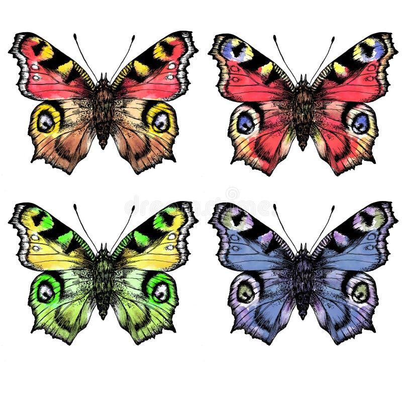 Akwarela maluję butterfliesDifferent w kolorze obraz stock