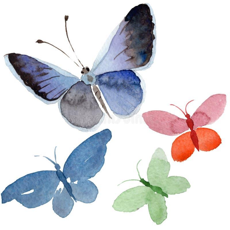 Akwarela motyla oferty insekt, intresting ćma, odizolowywał skrzydłową ilustrację ilustracji