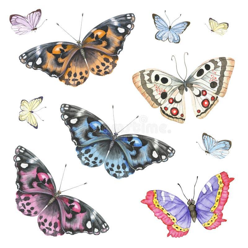 Akwarela motyla set ilustracji