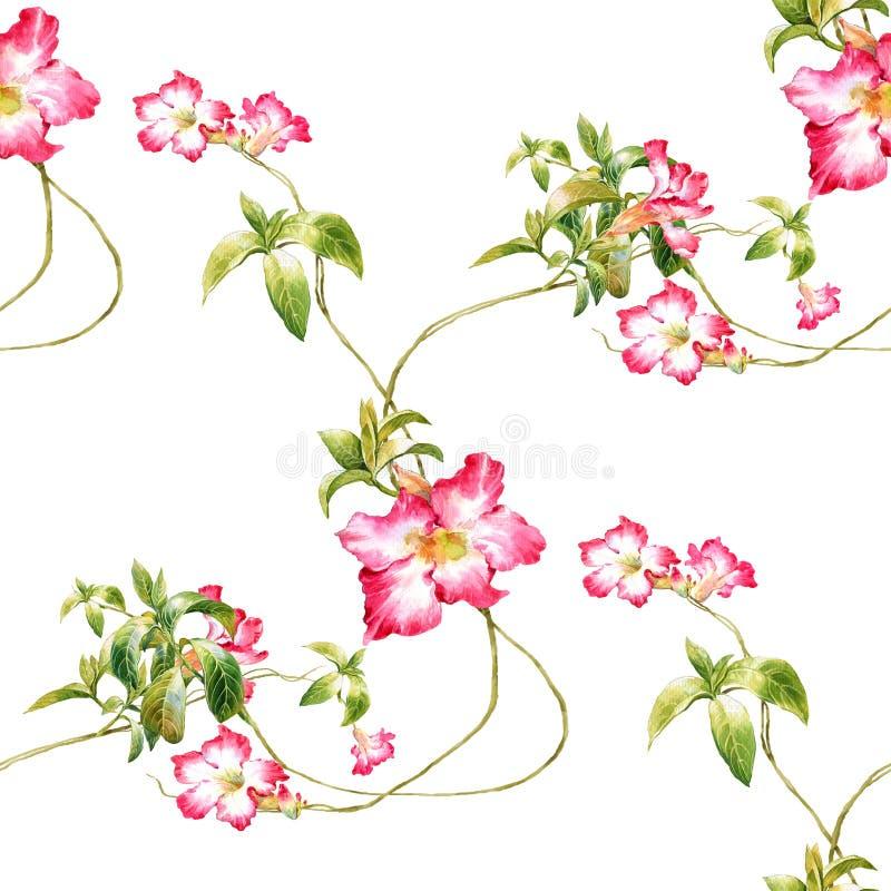 Akwarela obraz liść i kwiaty, bezszwowy wzór na białym tle royalty ilustracja