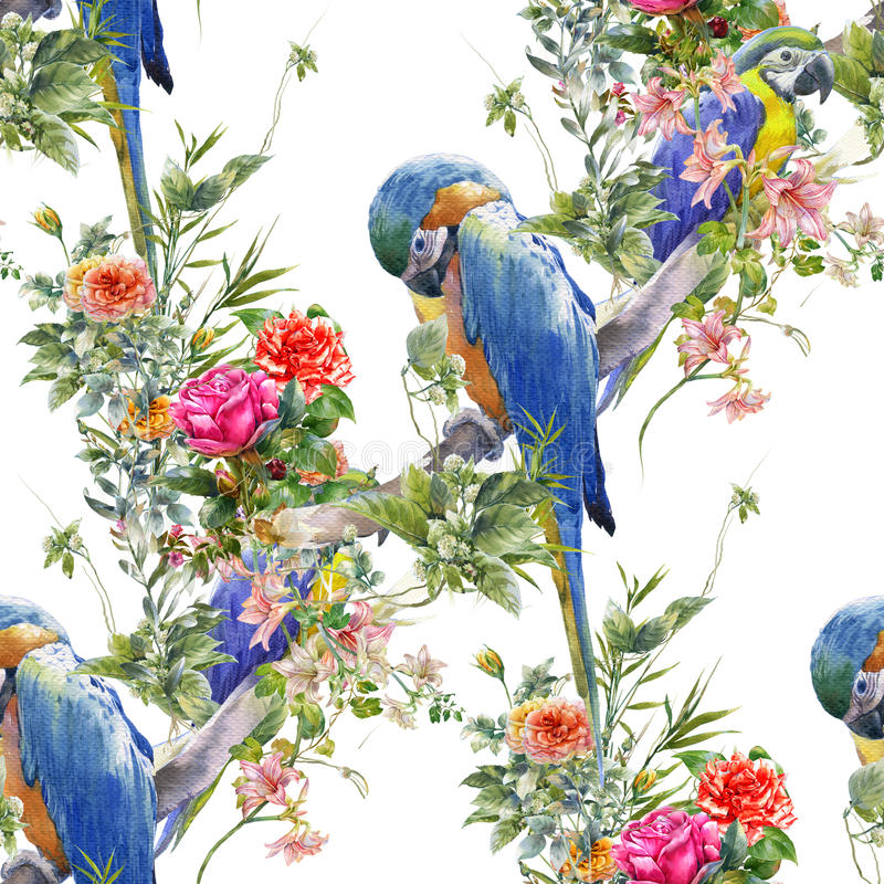 Akwarela obraz z ptakami i kwiatami, bezszwowy wzór na białej tło ilustraci ilustracji