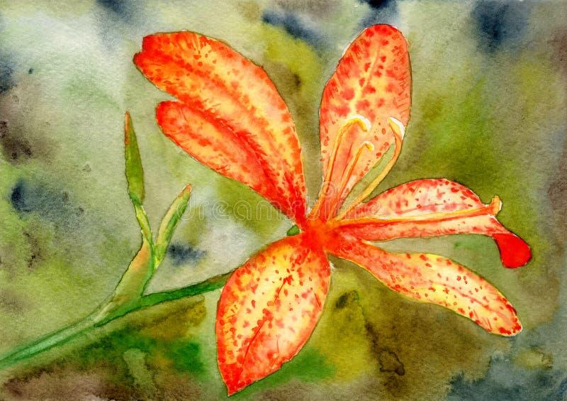 Akwarela obrazek pomarańczowa leluja na zielonym tle royalty ilustracja