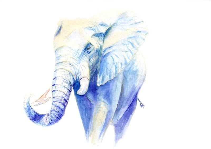 Akwarela obrazek słoń ilustracji