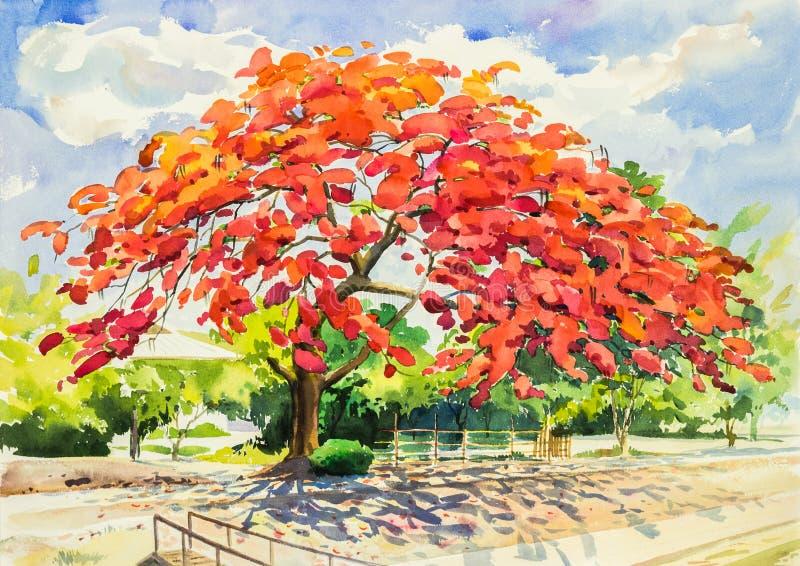 Akwarela obrazu oryginalny krajobraz, piękny pawiego kwiatu drzewo i ilustracja wektor